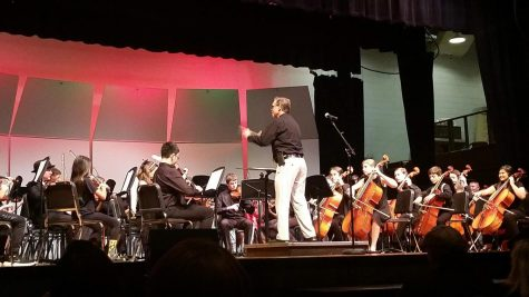 Is Orchestra For You?