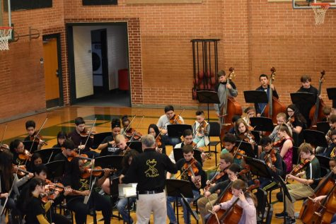 Orchestra Earns Superior Ratings